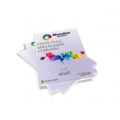 Papel Transfer Resinado Alta Qualidade - Pacote c/ 100 folhas A4